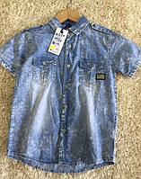 Котоновые рубашки для мальчиков S&D 10-16 лет