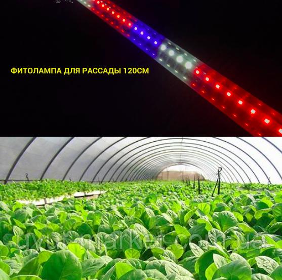 Фитолампа для рассады 120см 18Вт Т8 96D - фото 3