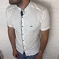Рубашка приталенная L, XL, XXL короткий рукав, мужская, слим. Турция турецкая мужская, лен Светлый