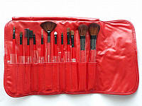 Набор кистей для макияжа SHANY Professional 12 - RED