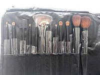 Набор кистей для макияжа SHANY Professional 12 - BLACK
