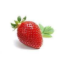 Стіл кухонний скляний Прямокутний Sweet berry 91х61 *Еко (БЦ-стіл ТМ), фото 3