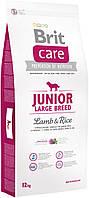 Сухой корм Brit Care Junior L для щенков крупных пород,с ягненком 12КГ