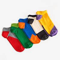 Шкарпетки Dodo Socks набір Tucan 44-46, 5 шт, фото 1