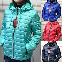 Куртка женская демисезонная, модель Д2