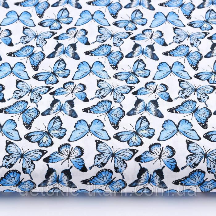 """Лоскут ткани """"Бабочки Морфо"""" синие на белом №2219а, размер 49*80 см"""