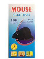 Клеевая ловушка от крыс и мышей голубая маленькая, упаковка 2 шт., фото 1