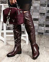 Стильные демисезонные женские сапоги ботфорты кожаные