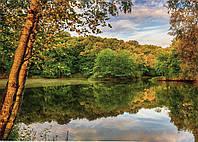 Фотообои Озеро в лесу  № 24