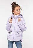 Модная куртка для девочки Робби 2, р 122-128.  Nui very  Украина, фото 2