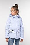 Модная куртка для девочки Робби 2, р 122-128.  Nui very  Украина, фото 3