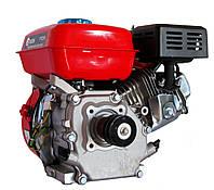Двигатель бензиновый Edon PT-210, фото 1
