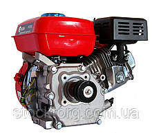 Двигун бензиновий Edon PT-210