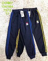 Спортивные брюки для мальчиков S&D оптом, 134-164 рр.