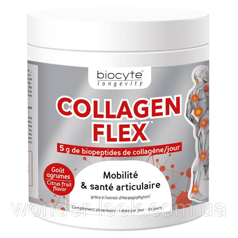 Collagen Flex РЕСТРУКТУРИЗАЦИЯ CARTILAGE ARTICULAR 240g Biocyte