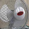 Настільний вентилятор Wimpex WX-907 (50 Вт), фото 5