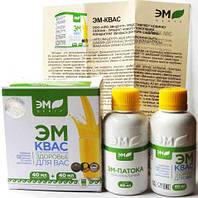 Эм Квас Оригинал 40 мл + патока 40 мл Арго, лечение желудка, кишечника, очистка организма, онкология, аллергия