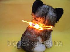 Миниатюрный ошейник для собак  Красный