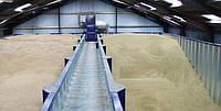 Склади напольного зберігання зерна