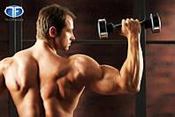 Тренажер Shake Weight (Шейк Уэйт) виброгантель для мужчин. Лидер продаж в Украине.
