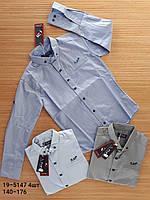 Школьная рубашка трансформер для мальчика 140-176 рост. Турция. Оптом