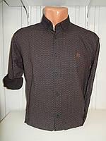 Сорочка чоловіча, рукав трансформер, дрібний візерунок, стрейч 006 \ купити сорочку