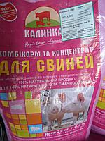 Калинка БМВД 15% для свиней от 30 до 60 кг. (Гровер)