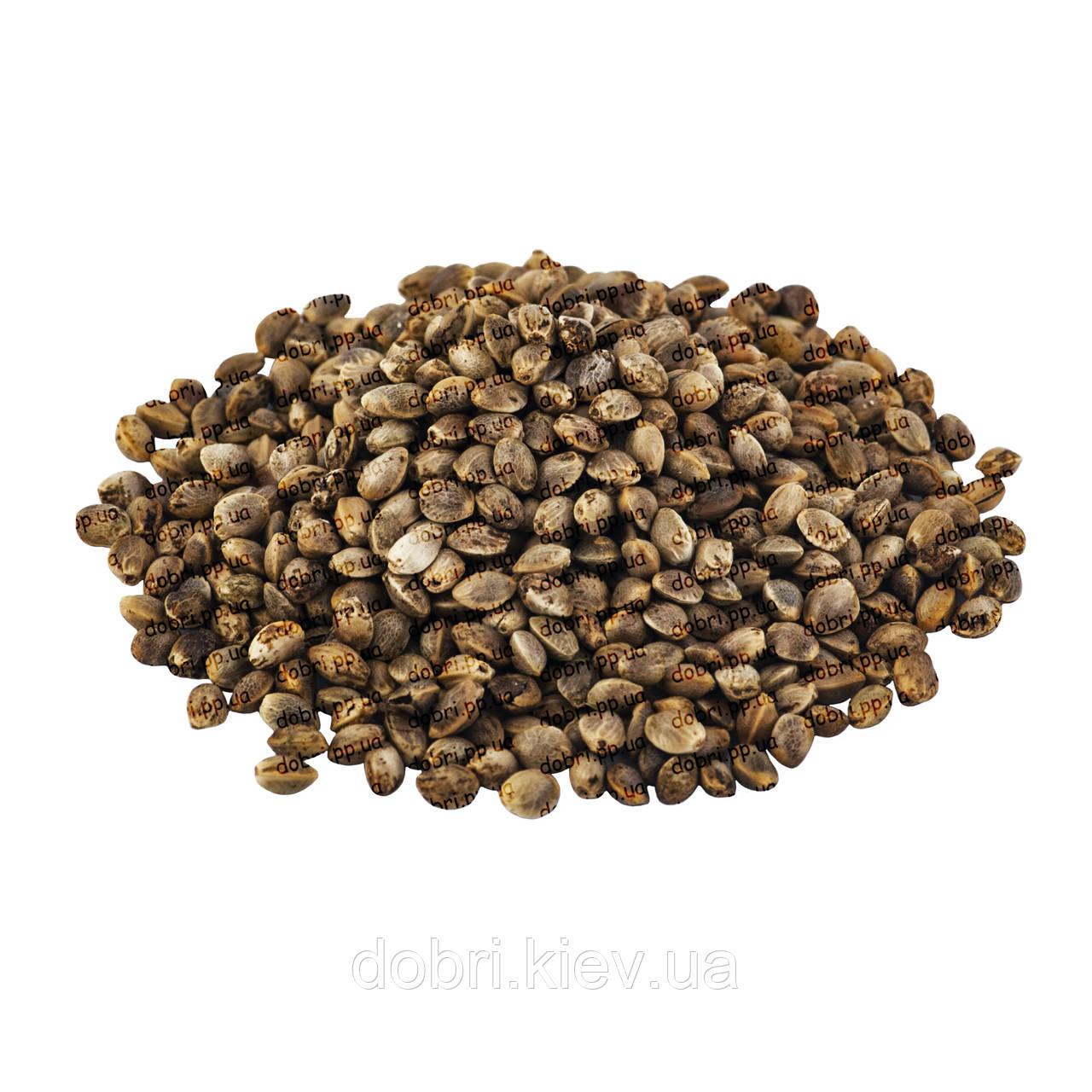 Семена марихуаны цена киев посевы конопли