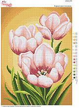 Вышивка бисером Карамельні тюльпани №159