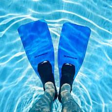 Водные виды спорта, общее