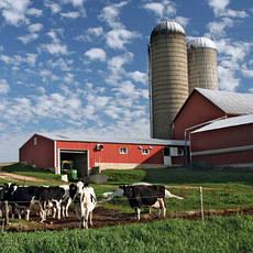 Строительство объектов сельского хозяйства