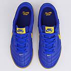 Футзалки мужские Nike SB Gato AT4607-400 - Оригинал, фото 6