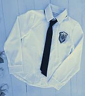 Блуза на девочку, длинный рукав, р. 128-152, белый , фото 1