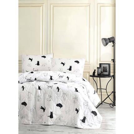 Покрывало детское 160х220 с наволочкой на кровать, диван Коты, фото 2