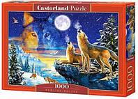 Пазлы Castorland 1000 элементов Стая волков, С-103317