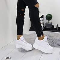 Женские сникерсы белые 5314