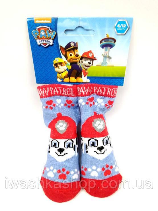 Носки Щенячий патруль на малышей 0 - 6 месяцев, Nickelodeon, Paw patrol