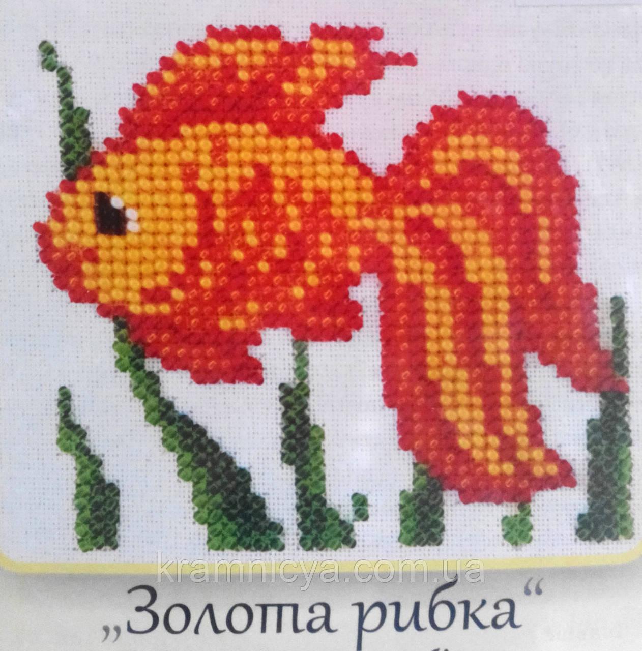 Золотая рыбка. Вышивание бисером на канве 11х11см.