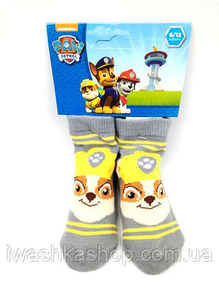 Серые носки Щенячий патруль на малышей 6 - 12 месяцев, Nickelodeon, Paw patrol