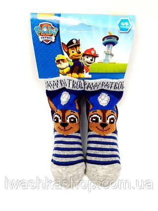 Полосатые носки Щенячий патруль на малышей 6 - 12 месяцев, Nickelodeon, Paw patrol