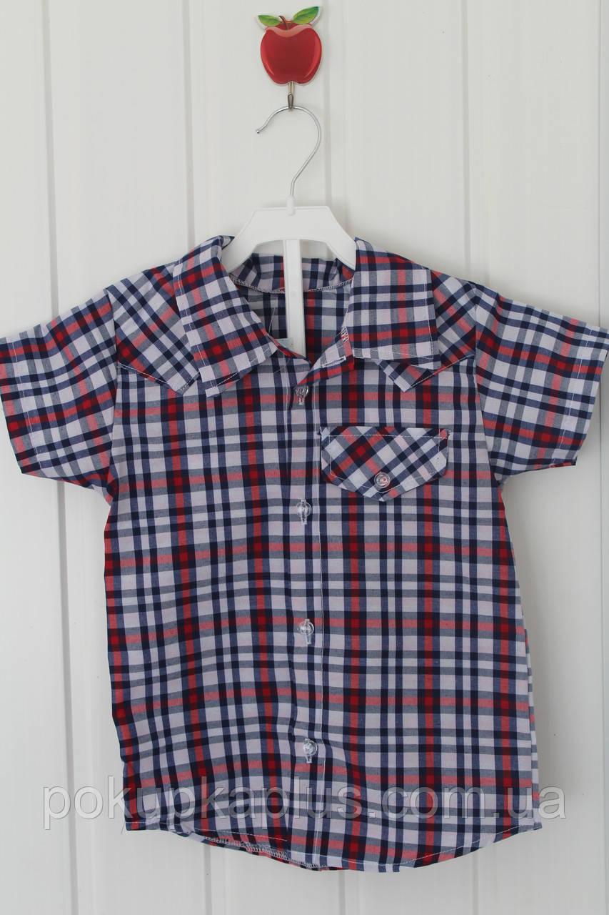 Рубашка для мальчика 2-3 года  (104-110)