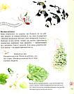 Експедиція з мурахою Софі. Автори Каста Стефан, Моссберґ Бу, фото 10
