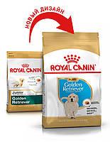 Сухой корм 12 кг для щенков породы Голден ретривер Роял Канин / GOLDEN RETRIEVER PUPPY Royal Canin