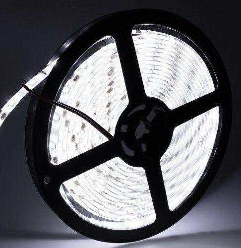 LED лента UkrLed SMD5630 60шт/м. IP33 Cool White (6500K)