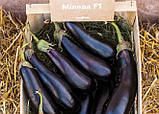 Миледа F1 10 шт семена баклажан Syngenta Голландия, фото 4