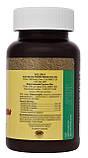 Бифидозаврики — жевательные таблетки для детей Bifidophilus Chewable for Kids - 90 таб - NSP, США, фото 2