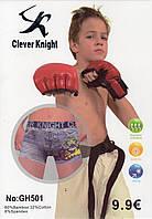 Детские подростковые боксеры хлопок с бамбуком Clever Knight, 6-15 лет, 501