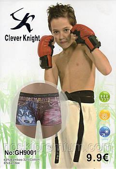 Детские подростковые боксеры хлопок с бамбуком Clever Knight, 6-15 лет, 9001