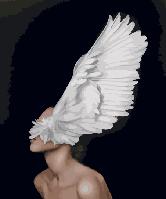 "Картина по номерам Brushme ""Крыло души"" 40х50см GX29240"