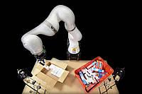 Специалисты в области информационных технологий показали эффективное решение, построенное с применением искусственного интелекта и роботизированной руки, предназначенное для упаковывания коробок в складских условиях.